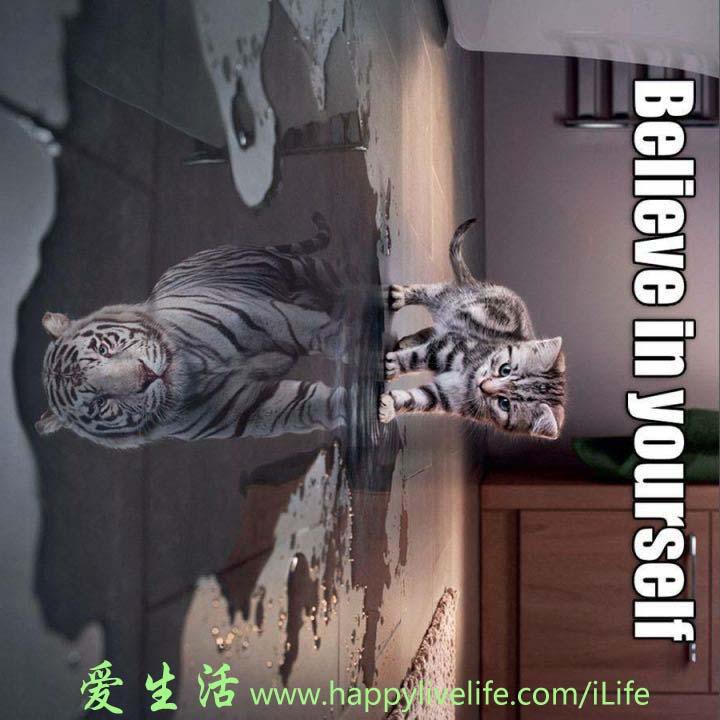 http://www.happylivelife.com/images/belin.jpg